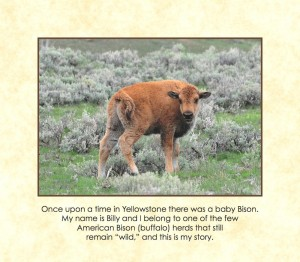 Once Upon A Time in Yellowstone_00